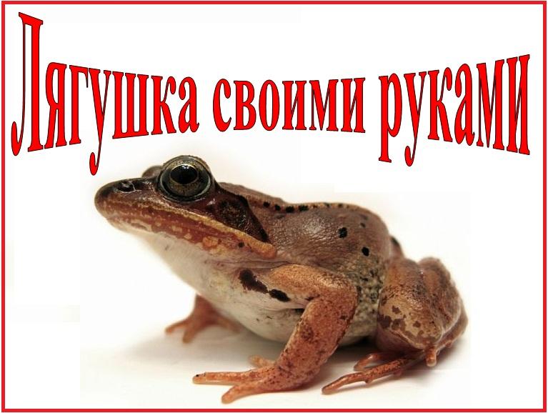 lyagushka